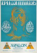 13th Floor Elevators Poster