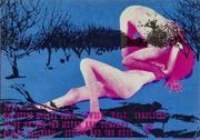 Steve Miller Band Postcard
