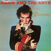 """Adam & the Ants Vinyl 12"""" (Used)"""