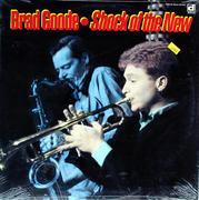 "Brad Goode Vinyl 12"" (New)"