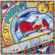 "The Big Sky Mudflaps Vinyl 12"" (Used)"