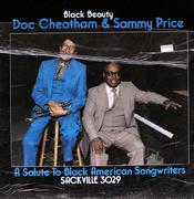 "Black Beauty Vinyl 12"" (Used)"