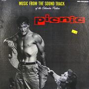 "Picnic Vinyl 12"" (Used)"