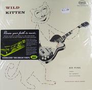 """Joe Puma Vinyl 12"""" (New)"""