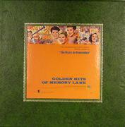"""Golden Hits Of Memory Lane Vinyl 12"""" (Used)"""