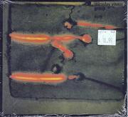 Miroslav Vitous Group CD