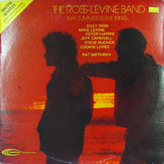 """The Ross-Levine Band Vinyl 12"""" (Used)"""