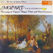 "Wolfgang Amadeus Mozart Vinyl 12"" (Used)"
