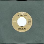 """Beach Boys Vinyl 7"""" (Used)"""