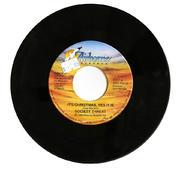 """Society Threat Vinyl 7"""" (Used)"""