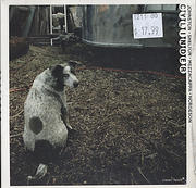 Johnston / Shelton / Mezzacappa / Nordeson CD