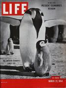 LIFE Magazine March 22, 1954 Magazine