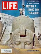 LIFE Magazine October 29, 1965 Magazine