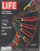 LIFE Magazine October 4, 1963 Magazine