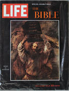 LIFE Magazine December 25, 1964 Magazine