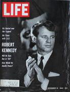 LIFE Magazine November 18, 1966 Magazine