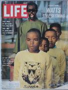 LIFE Magazine July 15, 1966 Magazine
