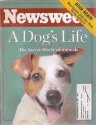 Newsweek Magazine November 1, 1993 Magazine