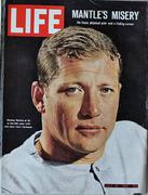 LIFE Magazine July 30, 1965 Magazine