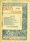 Birds And Nature Magazine February 1906 Magazine