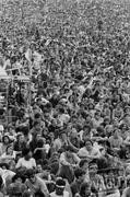 Woodstock Crowd Fine Art Print