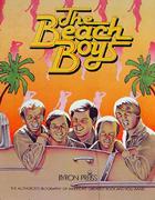 The Beach Boys Book