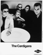 The Cardigans Promo Print