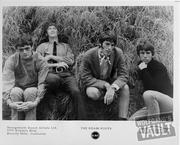 The Grass Roots Promo Print