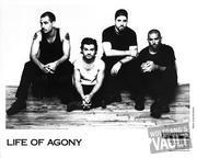 Life Of Agony Promo Print