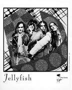 Jellyfish Promo Print