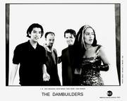 Dambuilders Promo Print