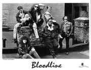Bloodline Promo Print