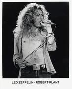 Robert Plant Promo Print