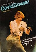 The King Of Glitter Rock David Bowie Book