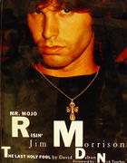Mr. Mojo Risin' Jim Morrison Book