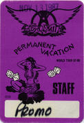 Aerosmith Backstage Pass