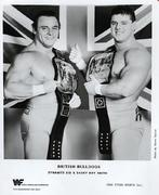British Bulldogs Promo Print
