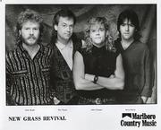 New Grass Revival Promo Print