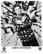 Robyn Hitchcock Promo Print