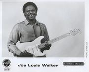 Joe Louis Walker Promo Print