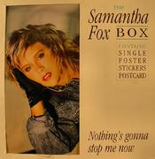 "Samantha Fox Vinyl 12"" (Used)"