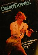 The King Of Glitter Rock David Bowie! Book