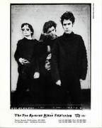 The Jon Spencer Blues Explosion Promo Print