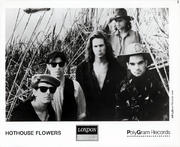 Hothouse Flowers Promo Print