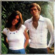 """Carpenters Vinyl 12"""" (Used)"""