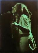 Bob Marley Wrapped Canvas