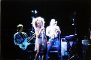 Tina Turner Vintage Print