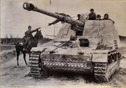 German Nashorn Self-Propelled 88mm L/71 Pak 43/1 Anti-Tank Gun Poster