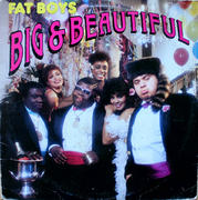"Fat Boys Vinyl 12"" (Used)"