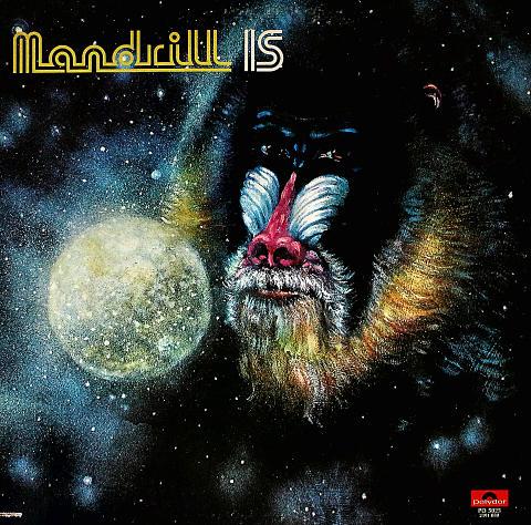 """Mandrill Vinyl 12"""" (Used)"""